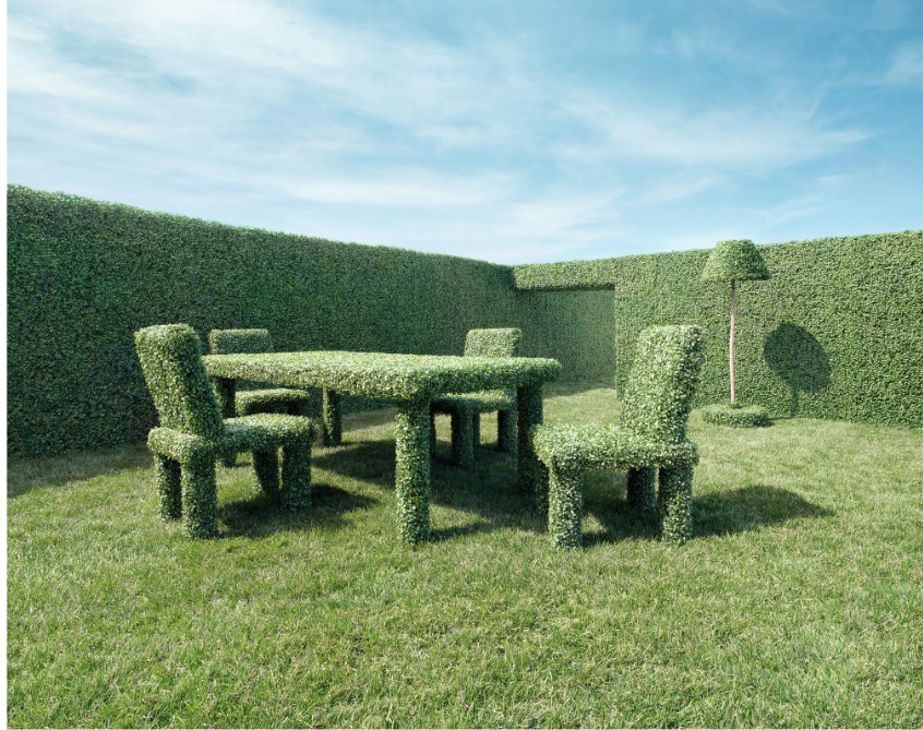The Art of Hedges Hedges