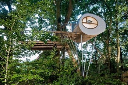 Mini Treehouse design
